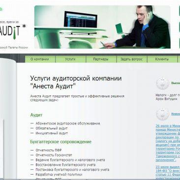 Сайт компании «Анеста Аудит» (г. Москва)